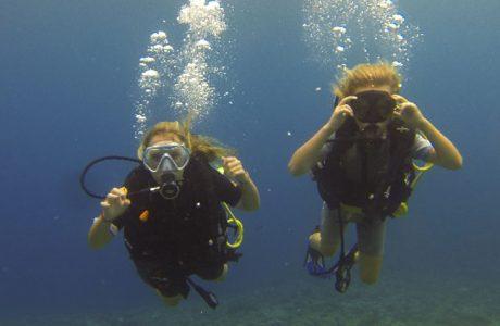des plongeurs